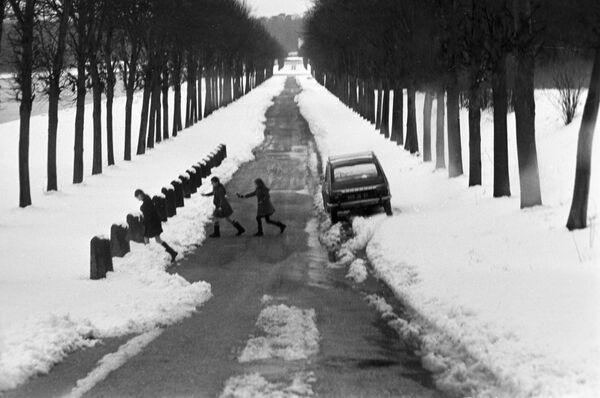 Парк Версальского дворца зимой