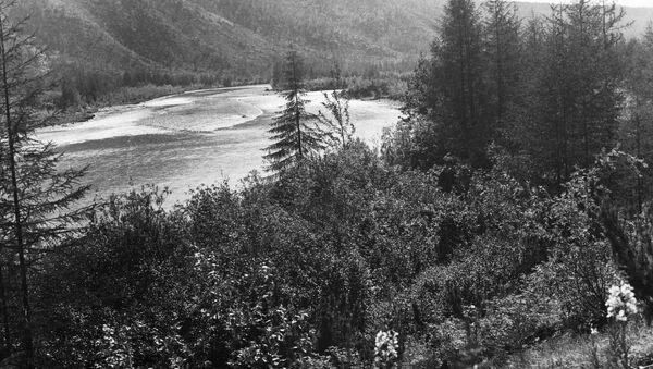 Река Колыма. Архив.