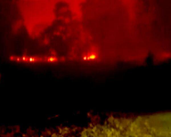 Вину за пожары в Австралии возлагают на поджигателей