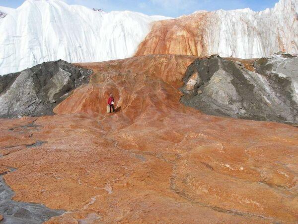 Кровавый водопад в Антарктиде выдал убежище древнейших микробов