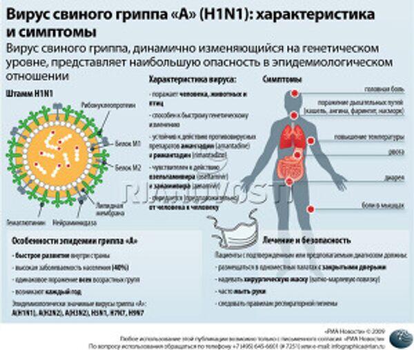 Вирус свиного гриппа «A» (H1N1): характеристика и симптомы