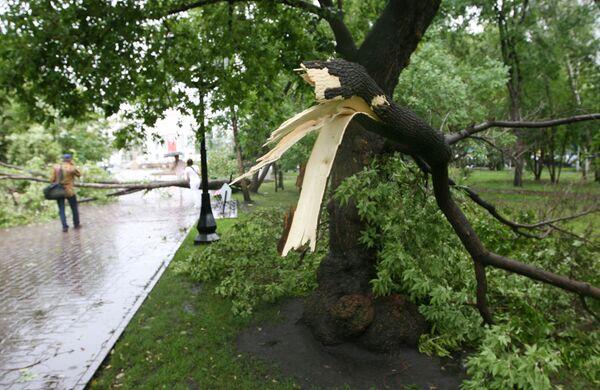 Гроза с сильным ветром и дождем прошла в Новосибирске