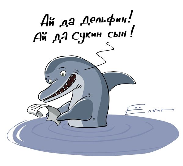 Ай да дельфин...