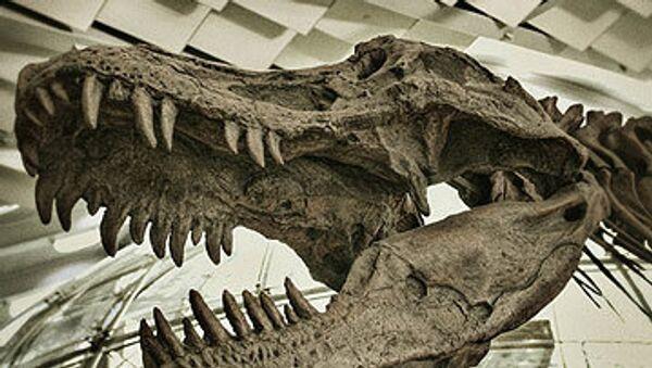 Динозавр. Архивное фото