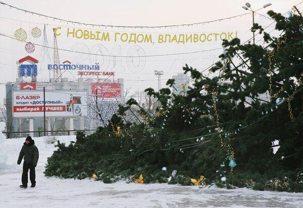 Искусственная елка, рухнувшая во Владивостоке, могла быть подложной