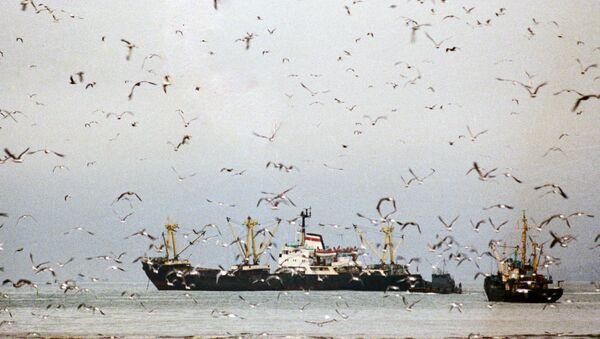 Рыболовецкие судна. Архив
