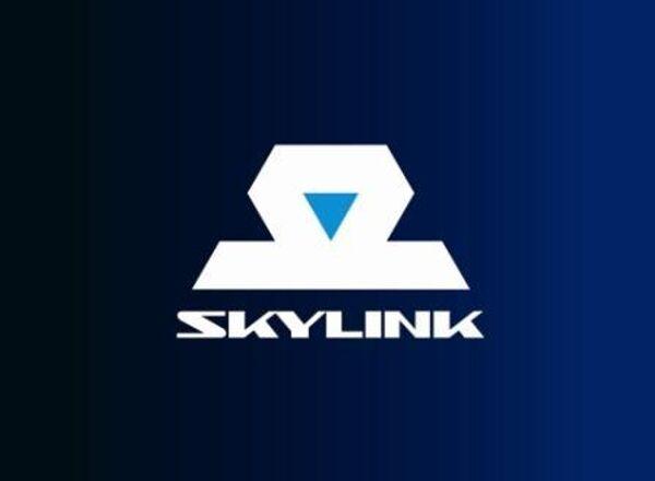 Логотип компании SkyLink. Архив