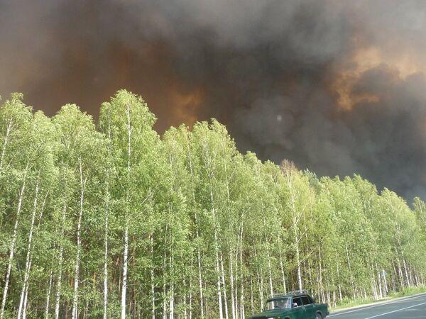Лесной пожар в Марий Эл