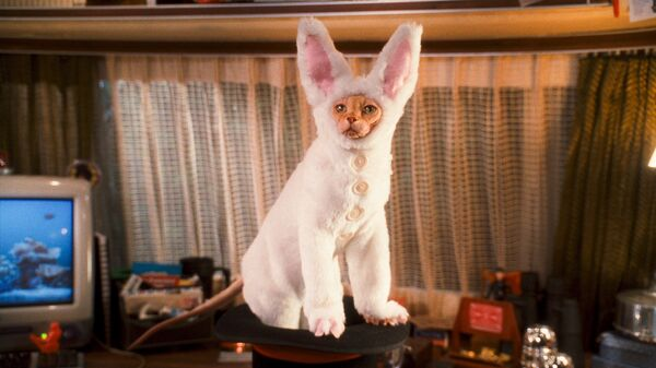 Кадр из фильма Кошки против собак: Месть Китти Галор