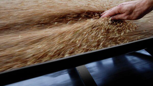 Работа зернового терминала