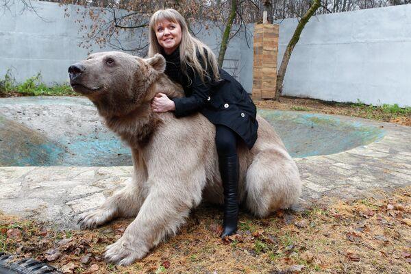 Медведь Степан в питомнике Лосиного острова
