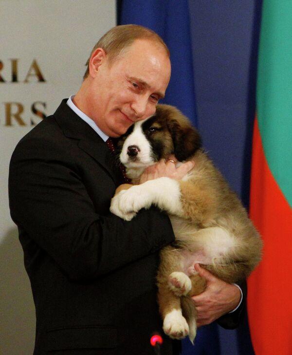 Владимир Путин со щенком