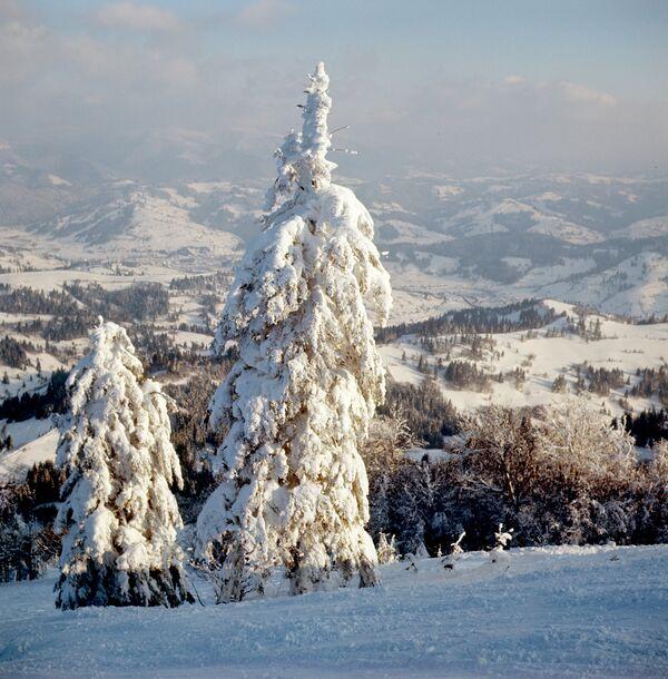Карпатские горы. Архив