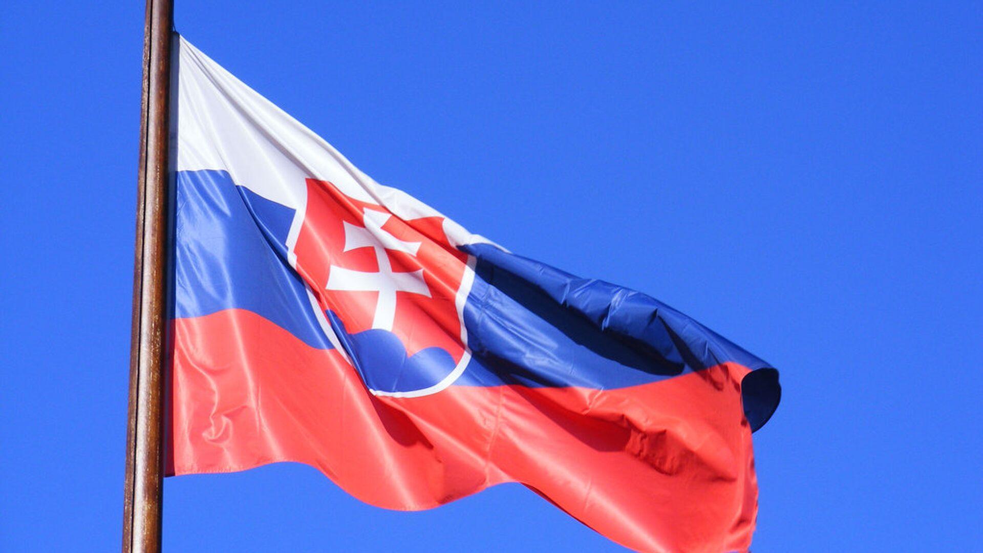 Флаг Словакии  - РИА Новости, 1920, 08.10.2020