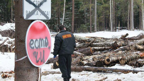 Строительство трассы через Химкинский лес. Архив