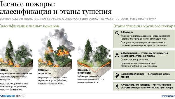 Лесные пожары: причины возникновения и методы предотвращения