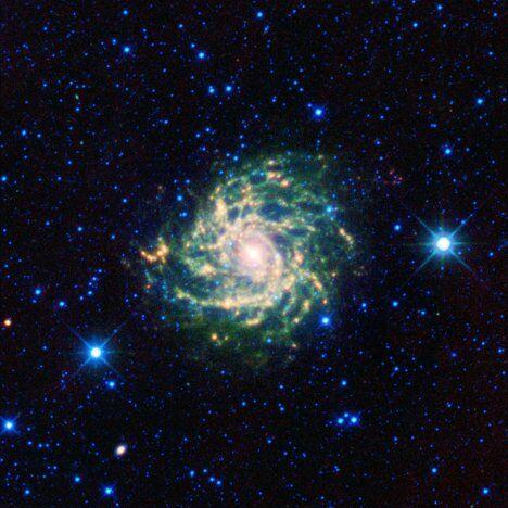 Галактика IC 342