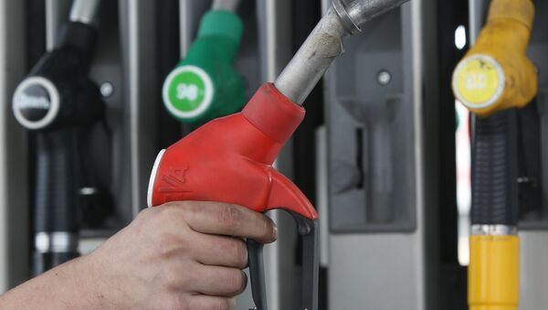 Власти РФ продолжат мониторинг цен на нефтепродукты, заявил Путин
