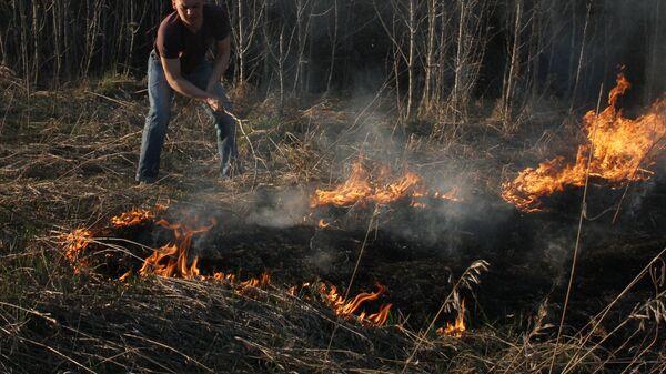 Возгорание сухостоя