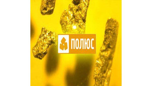 Полюс Золото увеличило чистую прибыль-2009 по МСФО в 5 раз