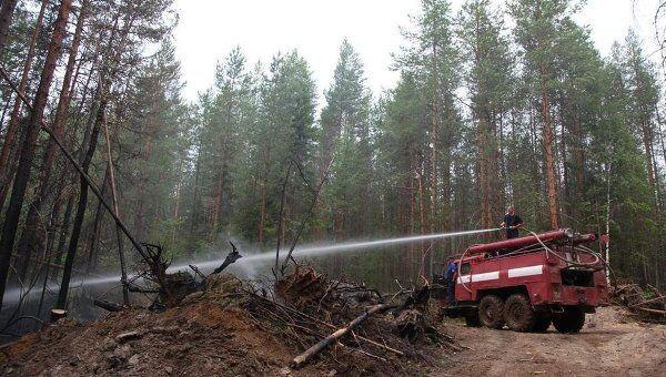 Тушение лесного пожара в Плесецком районе Архангельской области