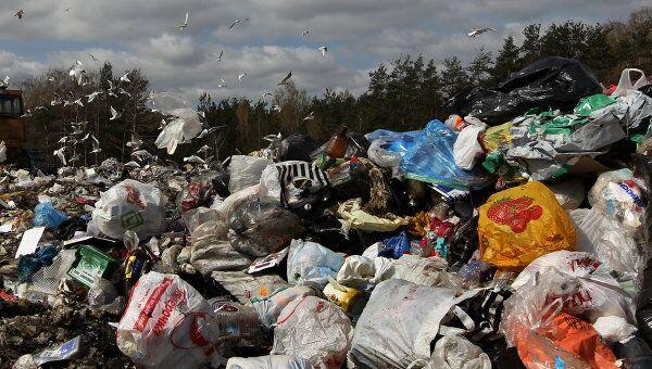 Полигон для утилизации бытовых отходов в Московской области