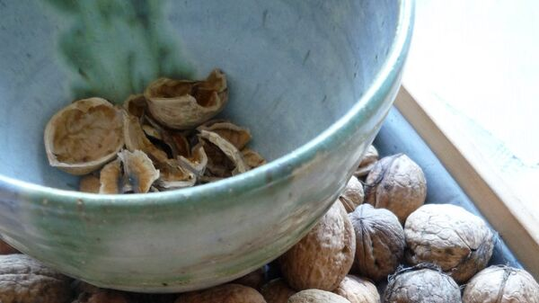 Грецкие орехи. Архивное фото