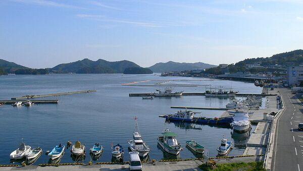 Порт в Японии. Архивное фото