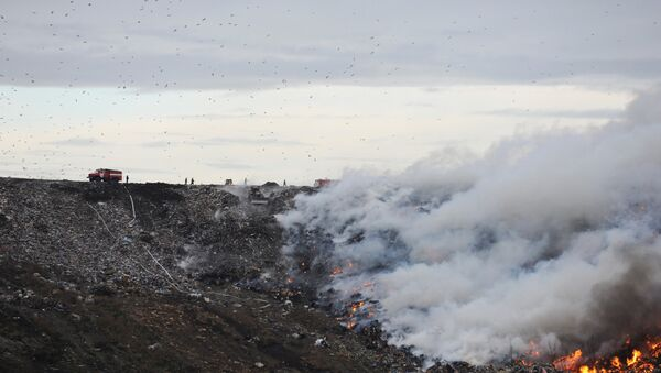 Пожар на свалке мусора на Волхонском шоссе в Ленинградской области