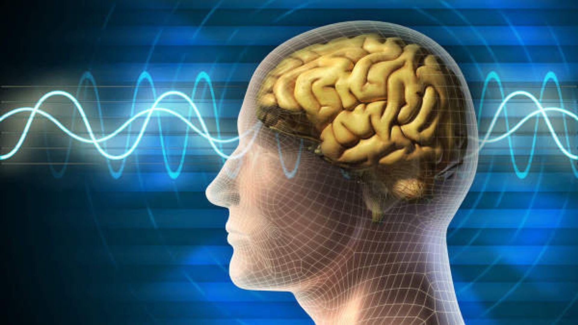 Береги мозг смолоду. Пять привычек, которые провоцируют деменцию