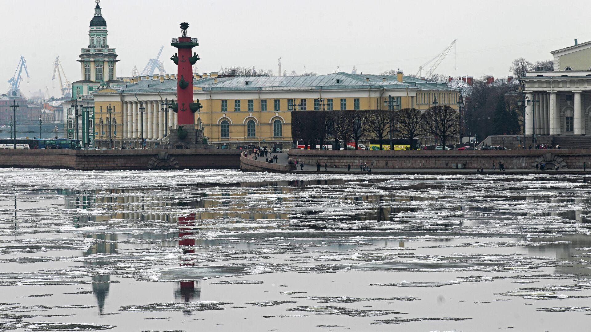 Весна пришла в Санкт-Петербург. Архив - РИА Новости, 1920, 13.06.2021