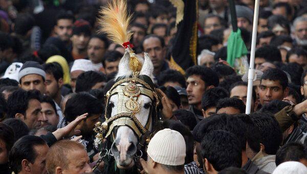 Лошадь, символизирующая лошадь имама Хусейна, во время процессии Мухаррам в городе Сринагар