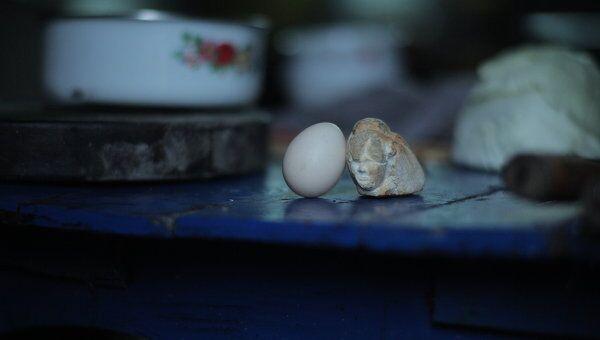 Кадр из фильма Яйцо и камень (Egg and Stone)