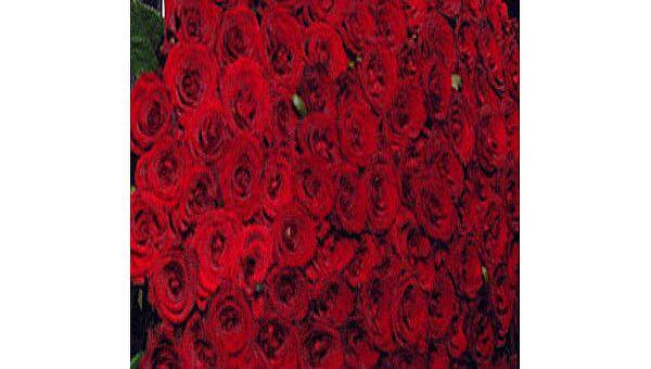 Мужчина, дарившей женщинам розы в центре Уфы, задержан милицией