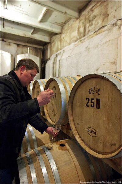 Wine Day, или Один день в винных подвалах