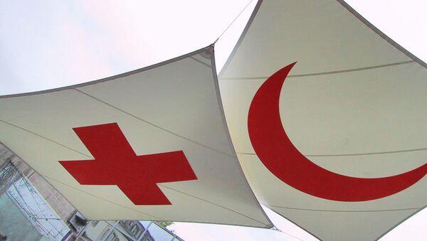 Логотип Красного Креста и Красного Полумесяца. Архивное фото