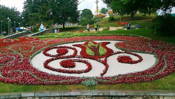 Панно из цветов Евро 2012