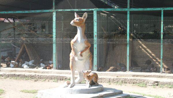 Туристы подарили одесситам кенгуру