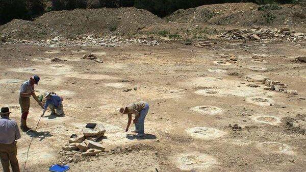 Отпечатки передних конечностей гигантского завропода в породах формации Глен Роуз (шт. Техас, США)