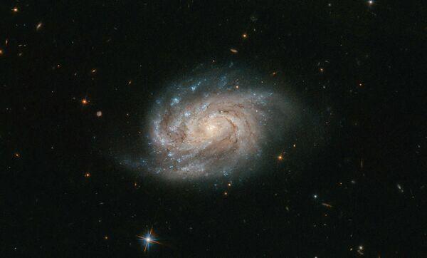 Галактика NGC 1803 в созвездии Живописец