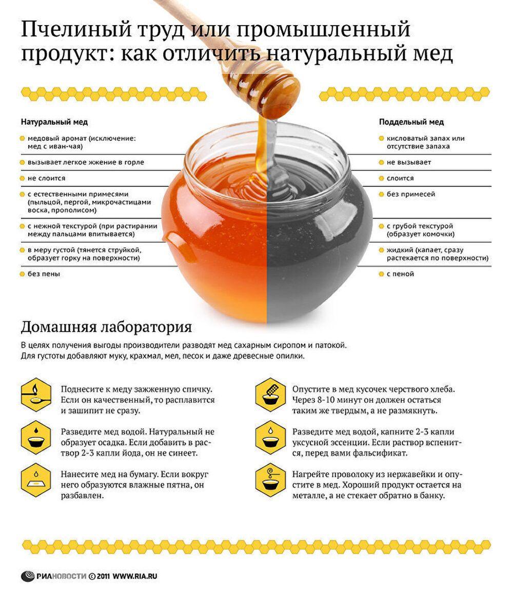 Пчелиный труд или промышленный продукт: как отличить натуральный мед