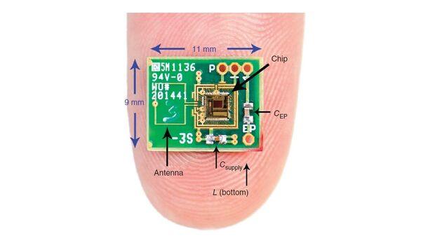 Электронная схема, использованная в эксперименте по получению электроэнергии из внутреннего уха