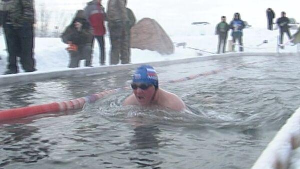 Морж-африканец рискнул в Сибири установить рекорд по плаванию