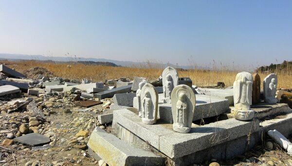 Последствия землетрясения в Японии в 2011 году, архивное фото
