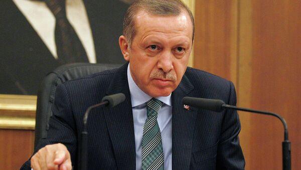 Премьер-министр Турции Тайип Эрдоган обращается к журналистам в аэропорту Анкары перед вылетом в Данию
