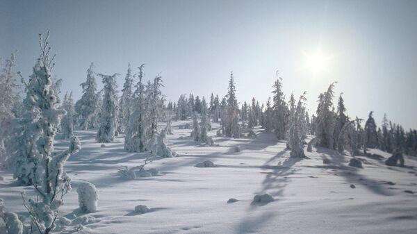 Зима в Оймяконе. Архивное фото