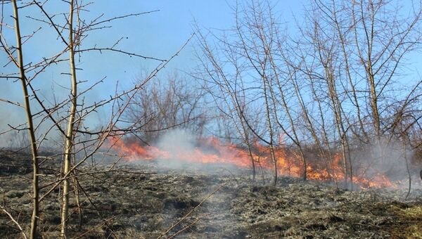 Пожар на горе Тугая в Горно-Алтайске
