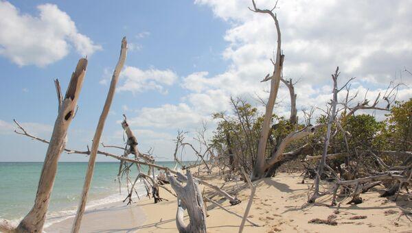 Куба может потерять 2,4% своей территории из-за повышения уровня океана