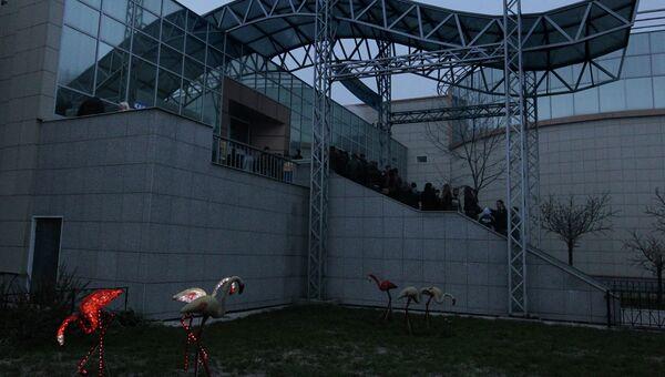 Приморский океанариум. Архивное фото