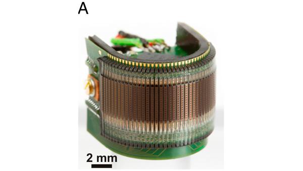Электронный аналог глаза мушки-дрозофилы, собранный из 600 микрокамер